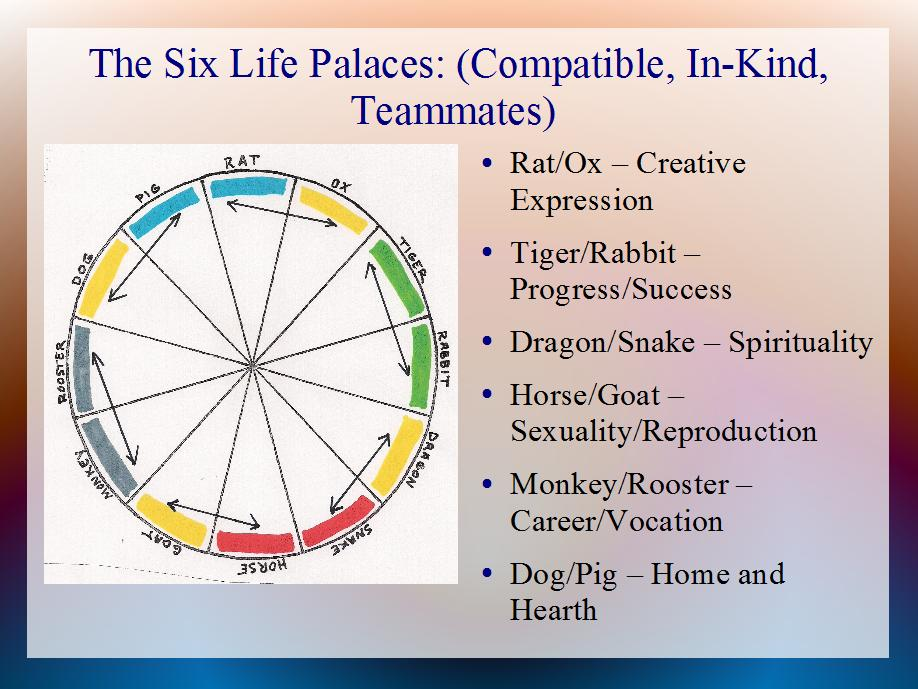 Chinese Animal Signs Signsinlife Revealing Meaning Through Astrology